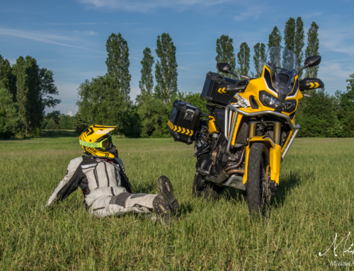 Yellow CRF1000L